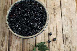 brombeere-gesund-lecker-garten-anbauen